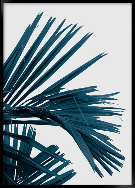 Plakat - Palm_no1