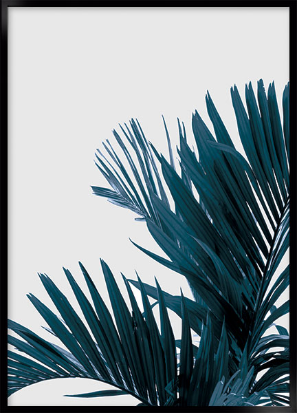 Plakat - Palm_no2
