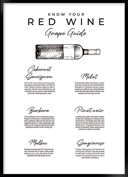 Plakat - Red wine guide