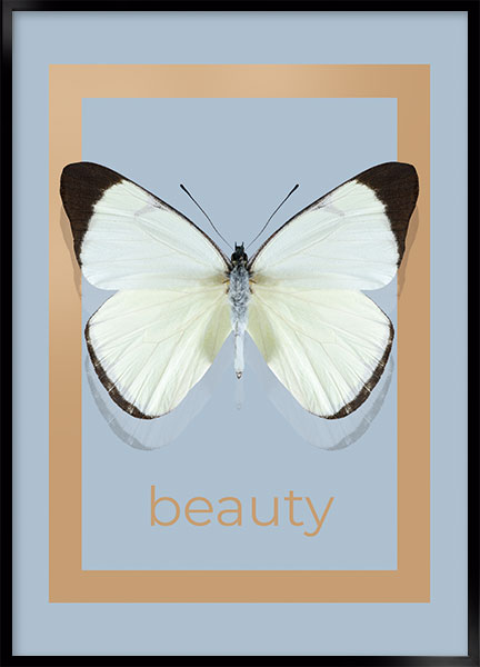 Plakat - Beauty